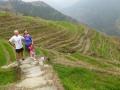 LongXhi - Rice Terrace