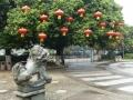 Guilin Park